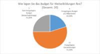 Anforderungsanalyse SAP LSO: Festlegung des Budgets